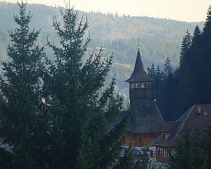 Manastirea Paltin - Asezamantul de la Petru Voda