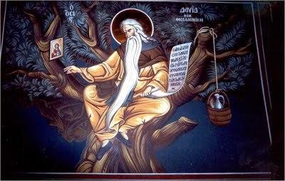 Sfintii dendriti, nevoitorii in copac