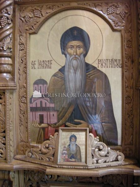 Sfantul Ioasaf Pustnicul