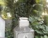 Vand loc de veci in cimitirul Reinvierea