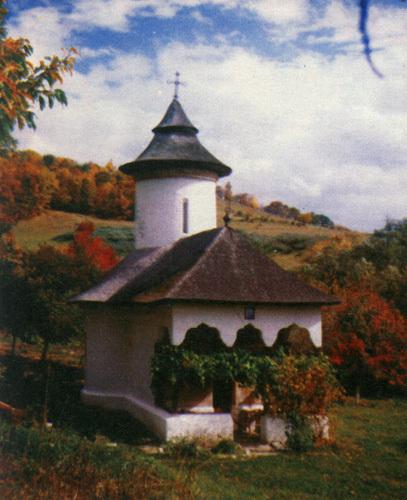 Manastirea Carnu