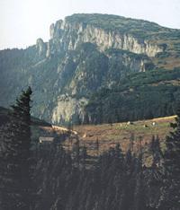 Manastirea Muntele Pietricica