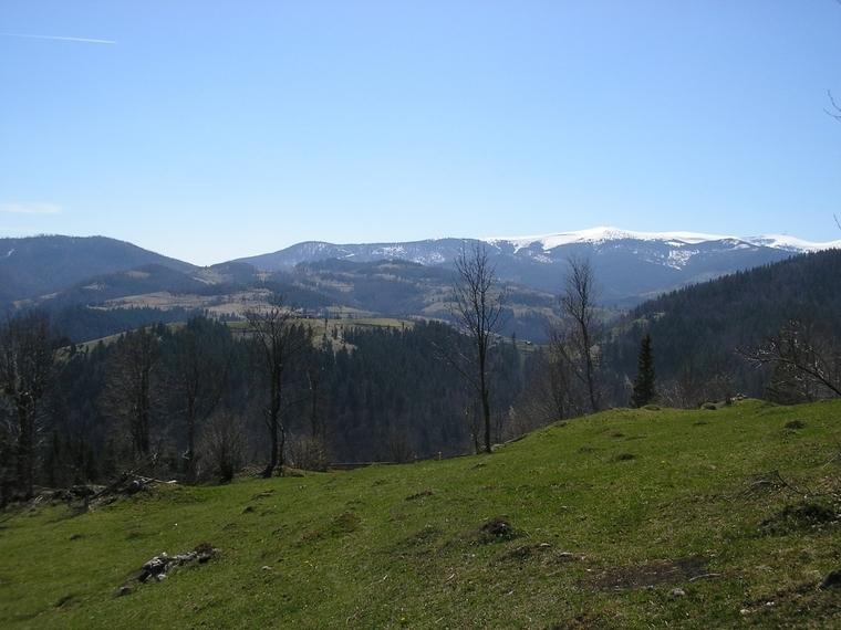 Manastirea Sfanta Treime, Albac