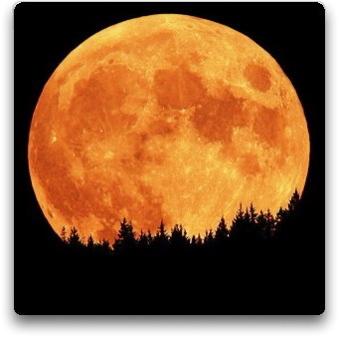 Fiecare luna poate fi ultima