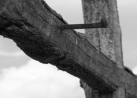 Rastignirea - Crucificarea