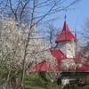 Manastirea Sfantul Ioan Rusu - Giurgiu