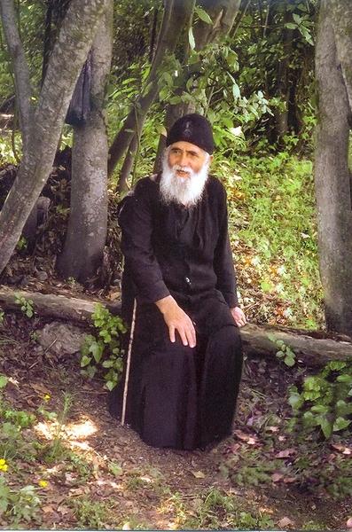 Marturii despre Sfantul Paisie Aghioritul