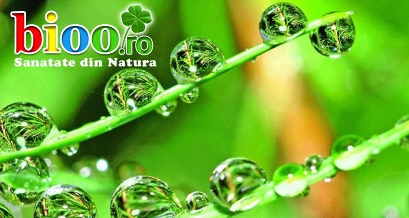 Ajuta-ti organismul sa reziste in fata bolii cu produsele Bionatura Plant