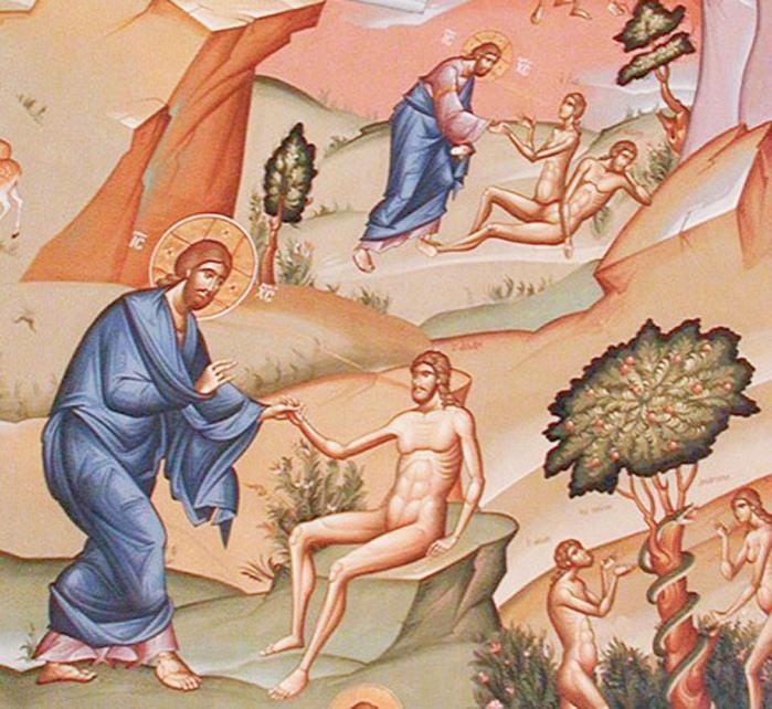 Coasta lui Adam, prefigurare a Bisericii si Euharistiei