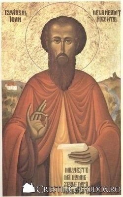 Sf. Cuvios Ioan Iacob Hozevitul