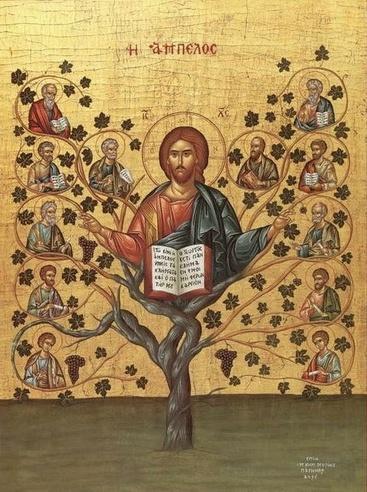 O teologie traita