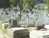 Vand loc de veci la cimitirul central Constanta