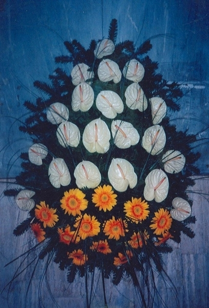 Coroana anturium alb