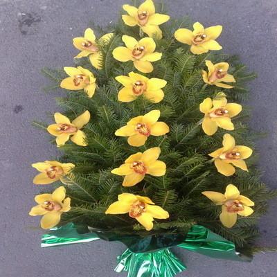 Jerba funerara din orhidee