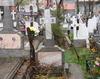 Loc veci 1x2 cimitirul Iancu Nou (Biserica Balaneanu