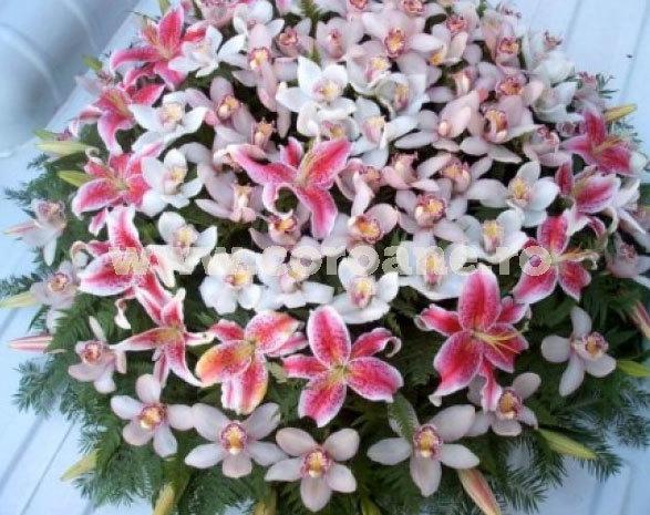 Coroana crini si orhidee