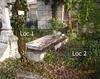 Ofer 2 locuri de veci in Cimitirul Bellu Ortodox.