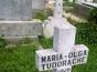 Loc veci cimitirul Iancu Nou - Balaneanu pret usor negociabil