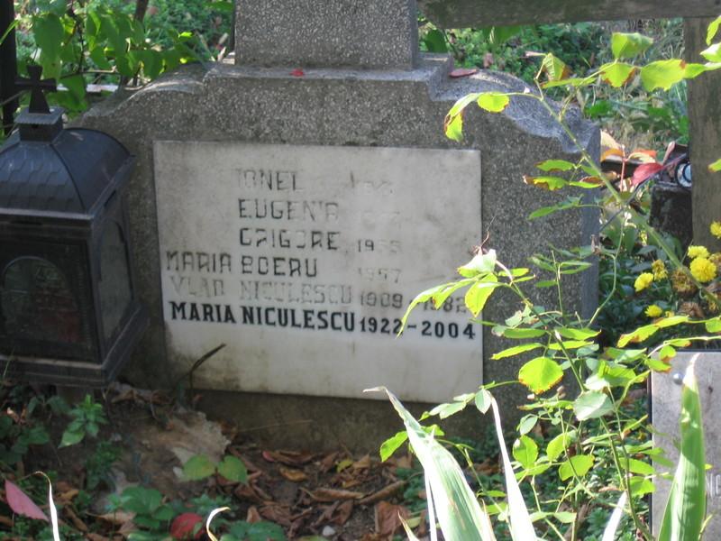 Vând 2 locuri de veci alaturate de 6 mp la cimitirul Sfânta VineriBucurești