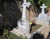 Vand Loc Veci Cimitirul Damaroaia Bucuresti